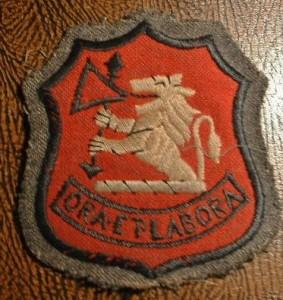 Winterdyne Badge